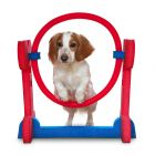 Dog Agility & Training Accessories