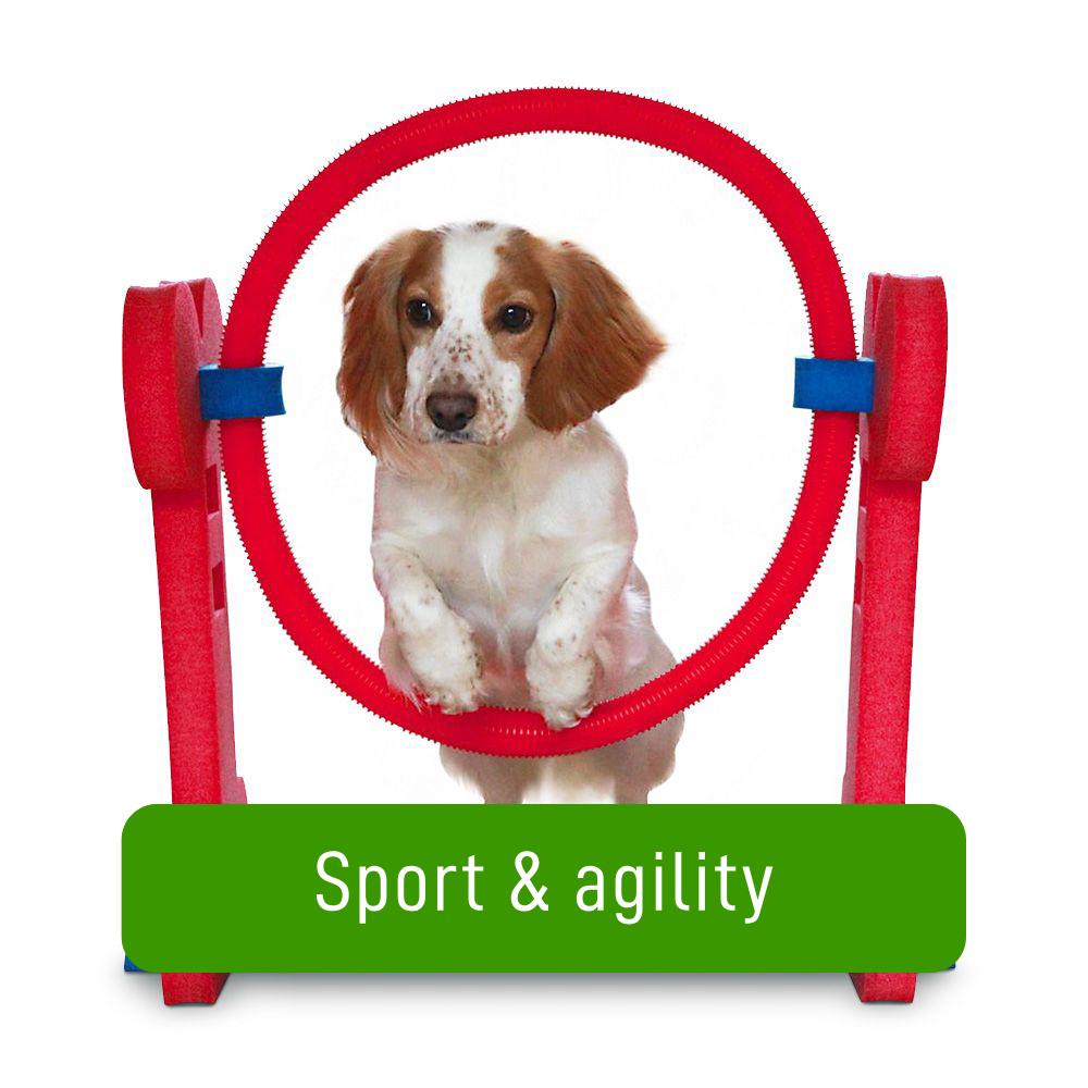 agility-za-pse