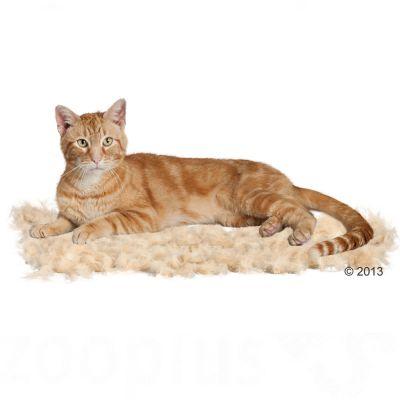 katzen b rste katzen kamm g nstig bei furminator deshedding tool f r katzen. Black Bedroom Furniture Sets. Home Design Ideas