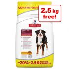 Hill's Science Plan Bonus Bags - 12kg + 2.5kg Free!*