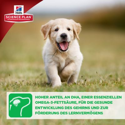 Hill's Science Plan Puppy Healthy Development Medium mit Huhn