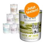 Mixpaket Wolf of Wilderness Adult