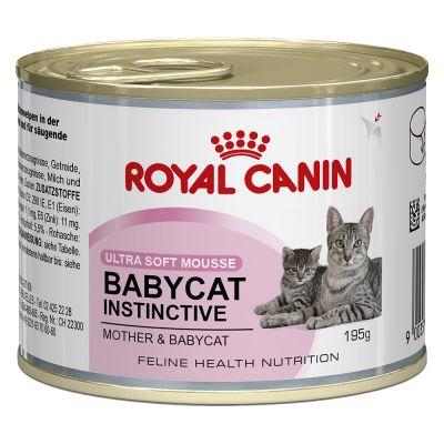 Royal Canin Babycat Instinctive Mousse Great Deals At