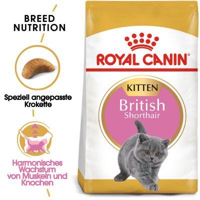 royal canin british shorthair kitten g nstig bei zooplus. Black Bedroom Furniture Sets. Home Design Ideas