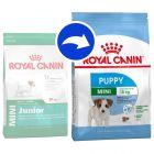 royal canin size hundefutter zu top preisen bestellen. Black Bedroom Furniture Sets. Home Design Ideas