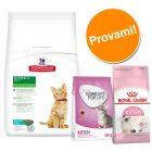 Set per gattini Hill's Science Plan Kitten Tonno, Royal Canin & Concept for Life Kitten