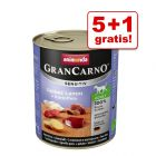 5 + 1 gratis! 6 x 800 g Animonda GranCarno Sensitive