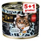 5 + 1 gratis! 6 x O'Canis for Cats misto