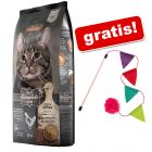 15 kg Leonardo Adult + Cannetta gioco Colorful gratis!