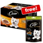 48 x 100g Cesar Deliciously Fresh Selection In Sauce + Cesar Snacks Free!*