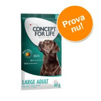 Concept for Life Medium Adult 80 g