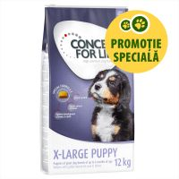 Concept for Life X-Large Puppy, 1.5 kg
