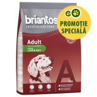 Briantos Adult Miel & Orez, 3 kg