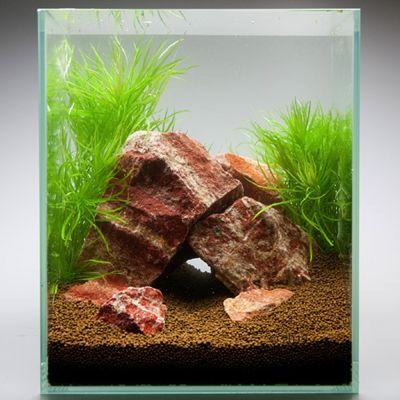 Pierres de Bourgogne veinées pour aquarium - kit 60 cm