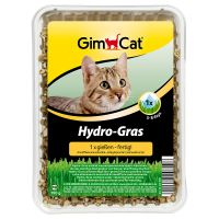 Herbe à chat GimCat Hydro-Gras - 150 g