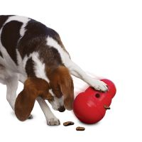 Large KONG Wobbler Dog Toy