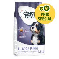 Concept for Life X-Large Puppy 1,5 kg pour chiot