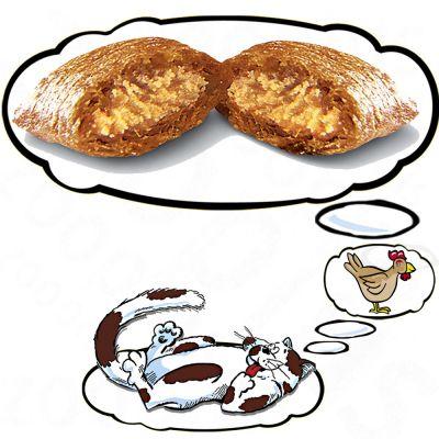Dreamies macskacsemege - csirkehússal (60g)