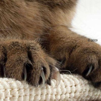 Trixie Sisal Cat Scratching Board XL