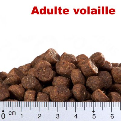 Smilla Adulte volaille - 1 kg