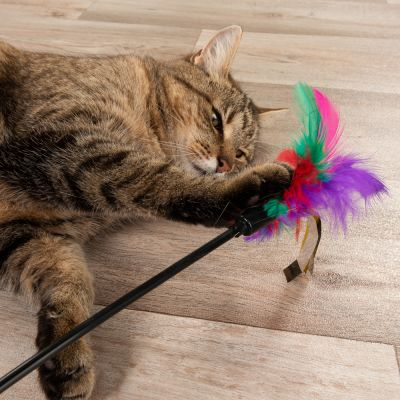 55cm Feather Waggler Cat Toy