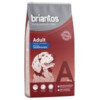 Briantos Adult Somon & Orez 3 kg