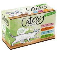 12 x 100 g Catessy kousky v omáčce-míchané balení