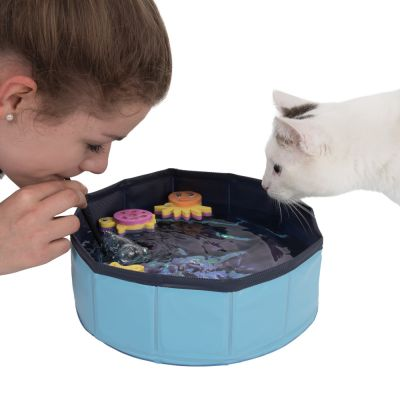 Kitty Pool Cat Toy