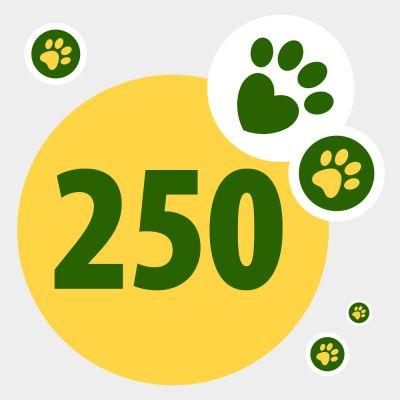 Donazione in aiuto ad animali bisognosi: 250 punti