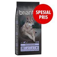 Briantos Adult And & Potet - Kornfri 1 kg