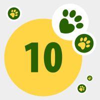 Dona zooPuntos y ayuda a una mascota necesitada: 10 zooPuntos