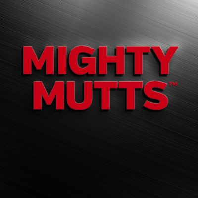 Mighty Mutts™ Tough Dog Toys Rubber S-Bone