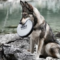 Wolf of Wilderness Hundefrisbee