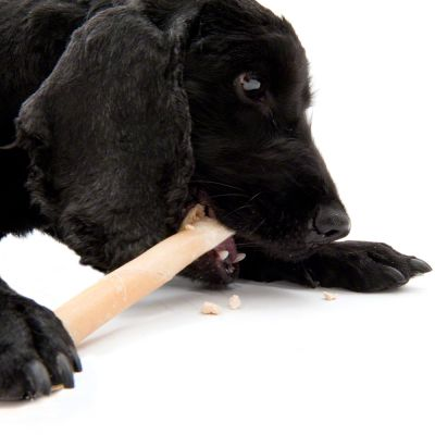 45g Trixie Dog Chew Rolls with Tripe