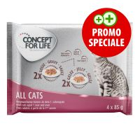 Set prova misto! Concept for Life All Cats (4 x 85 g)