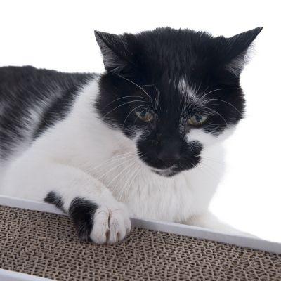 Multi-Scratch Cardboard Cat Scratching Pad