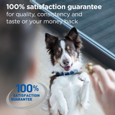170g Hill's Dental Care Dog Chews