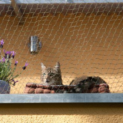 Dróttal erősített macskaháló- 2 x 1,5 m