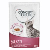 Concept for Life All Cats - in gelatina (12 x 85 g)