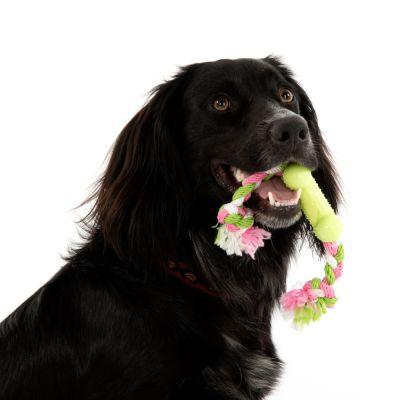 Bone Dog Toy with Rope