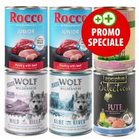 Set Rocco, Lukullus, Wolf of Wilderness & zooplus Junior (6 x 400 g)