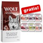 Adult: 12 kg Wolf of Wilderness + 6 x 300 g Nassfutter-Mix gratis!