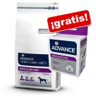 Advance Veterinary Diets 12 kg + Advance suplemento nutricional ¡gratis!