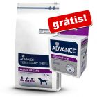 Advance Veterinary Diets 12 kg + Advance suplemento nutricional grátis!