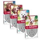 Advantix Spot-on per cani
