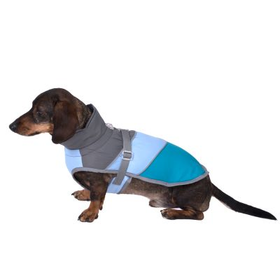 Adventure Dog Coat