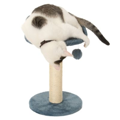 arbre chat enio prix discount sur. Black Bedroom Furniture Sets. Home Design Ideas