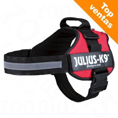 561c75904e97 Arnés Julius-K9 Power rojo para perros  opiniones y consejos