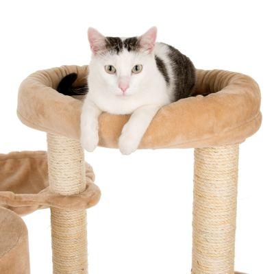Bear's Den Cat Tree