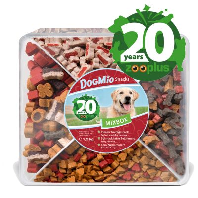Birthday Edition: DogMio Barkis Snack Box